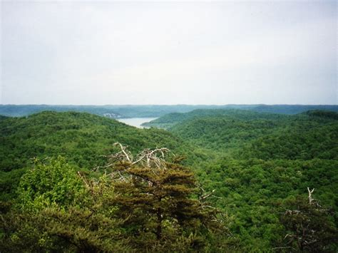 Tater Knob Tower by Daniel Boone National Forest A Kentucky Natlforest