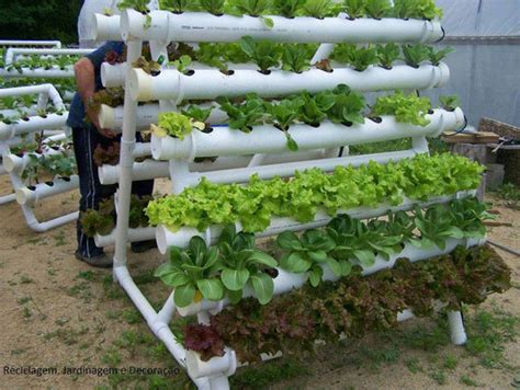 How To Make A Vegetable Garden by 15 Vegetable Garden Ideas
