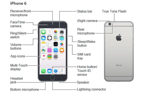 iphone 6 user manual and guide pdf