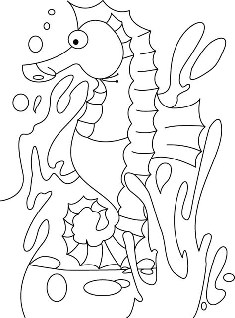 free printable coloring pages seahorses 13 seahorse coloring pages print color craft