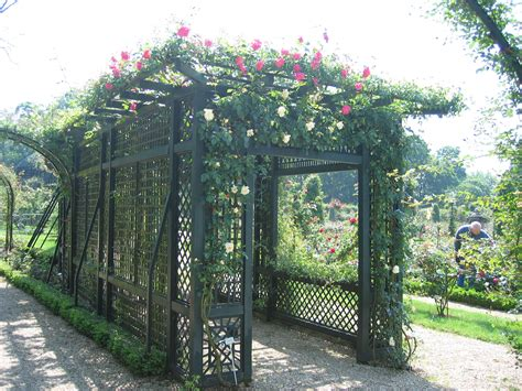 how to build an arbor trellis trellis the rose journal