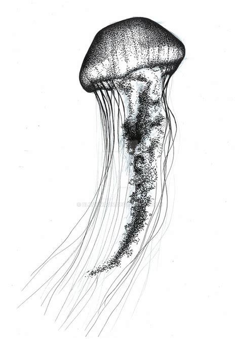 Drawing Jellyfish by Jellyfish Amazing Drawing Drawing Skill