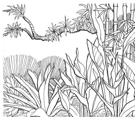 jungle tree coloring page 2o awesome jungle coloring pages