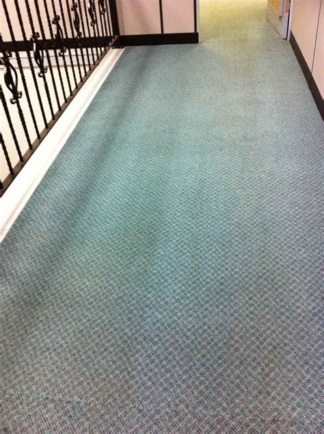 rug cleaning penrith mobile curtain cleaning penrith nsw curtain menzilperde net