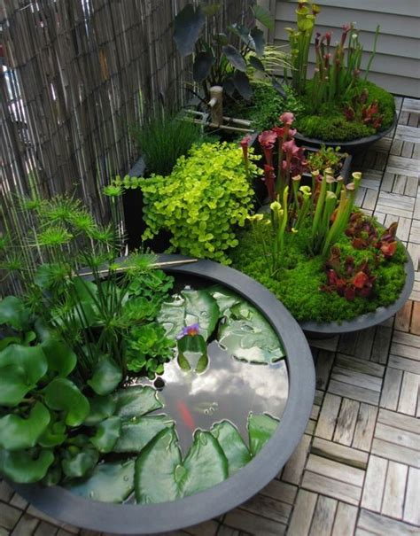 Patio Water Garden by Best 25 Container Water Gardens Ideas On Do