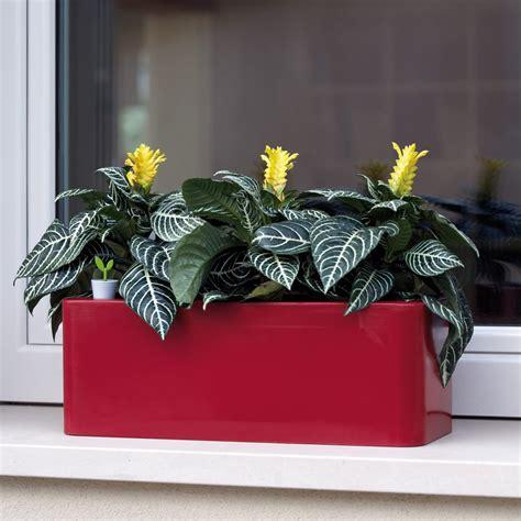 fioriere per davanzale finestra fioriera a cassetta per vasi e piante calypso nicoli