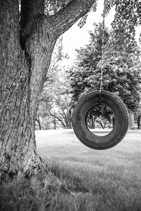 old tire swing a stock photo of an old tire swing in wisconsin