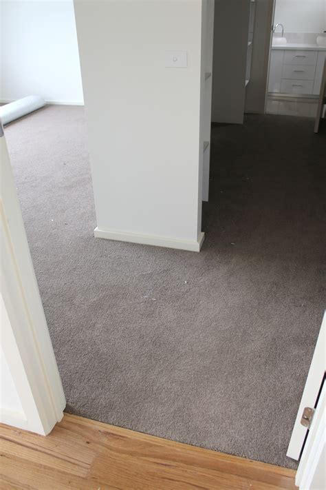 carpet or floorboards in bedroom bedrooms carpet lot 2017 and floorboards or in pictures
