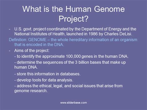 section 13 2 the human genome project human genome project definition of human genome project