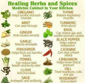 medicinal herb chart herbalism medicine