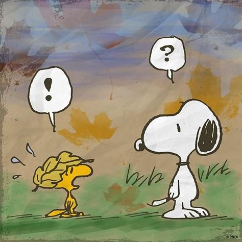 snoopy decke 90 best images about garfield snoopy smiley archies
