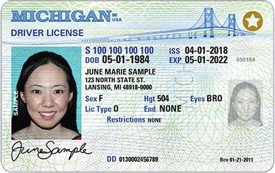 Real Id Documents Needed