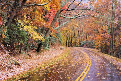 carolina fall colors fall foliage asheville nc mountain travel tips