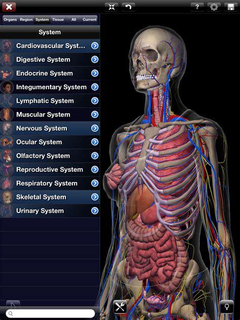 best anatomy software human anatomy 3d anatomy software free reviews