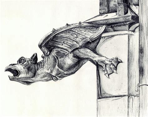 gargoyle drawing by celia fedak