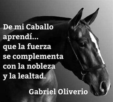 mujer que hace el amor con caballo de mi caballo aprend 237 mi pasi 243 n los caballos
