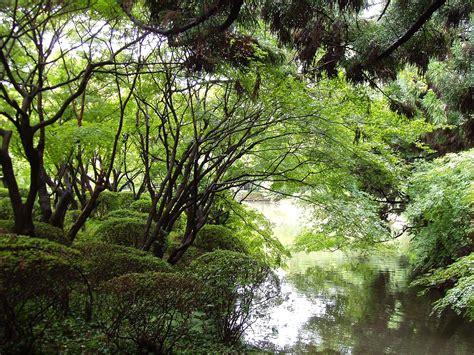 kyoto botanical garden wikipedia