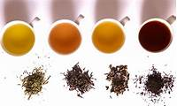 Indian Assam Black Tea Moreover Different Types Of And Their
