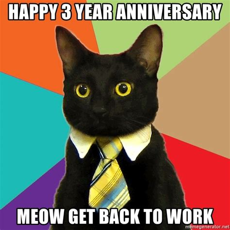 Buisness Cat Meme - happy 3 year anniversary meow get back to work business