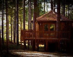 forest cabins forest holidays sherwood forest cabins