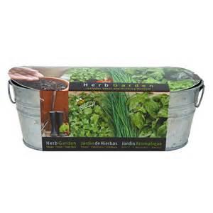 shop buzzy herb gardening kit  lowescom