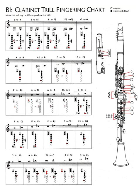 diagram of clarinet chart clarinet sheet picture