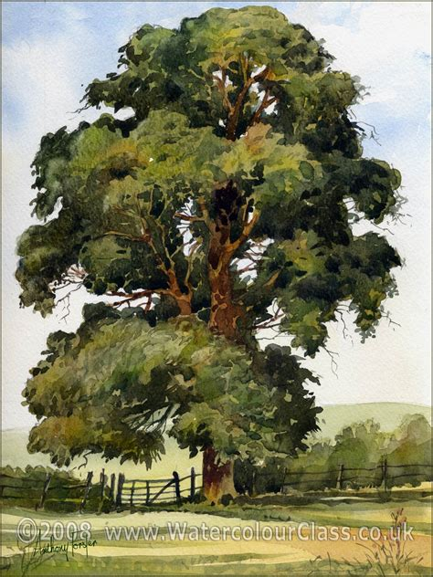 water color tree anthony forster classes watercolour painting tuition