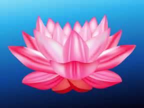 Lotus Graphic Lotus Flower Vector