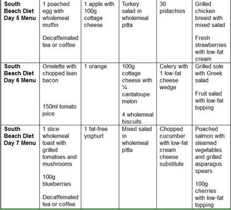 induction phase sle menu induction phase diet menu 28 images 1000 ideas about no carb food list on no carb foods
