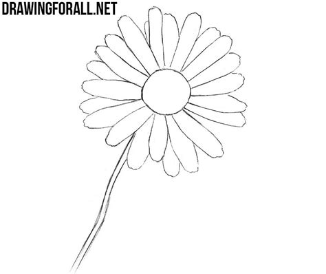 A Drawing Of A Flower by How To Draw A Flower Easy Drawingforall Net