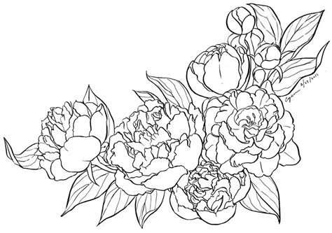 peony coloring page printable coloring pages