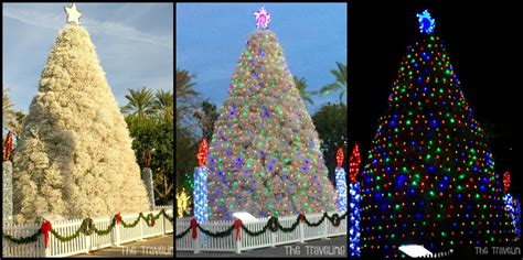 only in arizona the tumbleweed christmas tree the