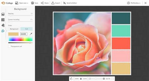 how to color a create a color palette picmonkey