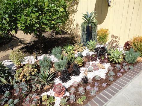 succulent garden design yelp