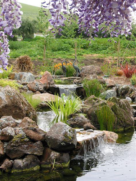 Ordinary Pacific Gardens Santa Clara #5: Hollister-pond-magic-wetland-systemJPG-6.jpg
