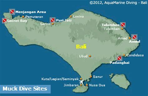 muck diving  bali muck sites  critter spotter guides