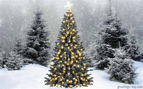 christmas gif image  whatsapp mastimastercom
