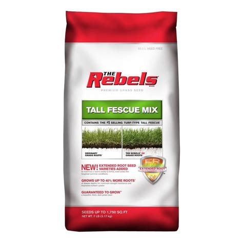 the rebels 7 lb fescue grass seed mix 100081770
