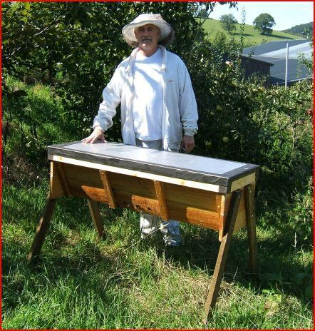 top bar beekeeping hauts ruche and bar on pinterest