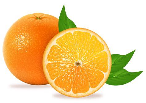 imagenes png frutas frutas png mi mundo so 209 ado gabitos