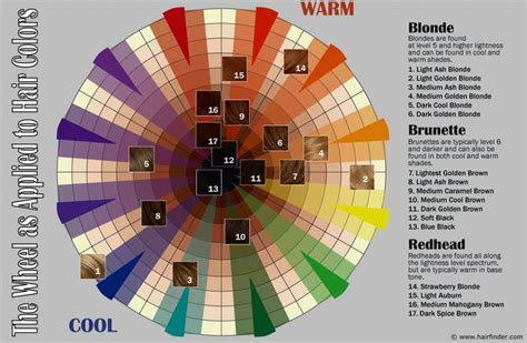 hair color spectrum 25 best ideas about hair color wheel on color