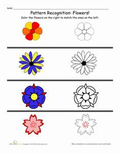 patterns in nature worksheet coloring page bugs in nature worksheets pre kinder