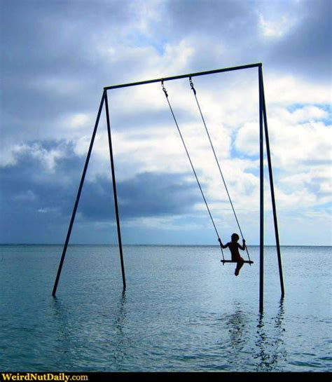 ocean swing set funny pictures weirdnutdaily ocean swing