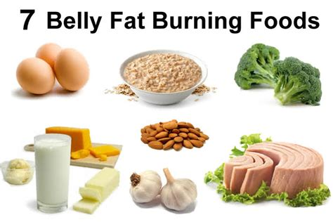 healthy fats non dairy the chef burning foods and healthy tips