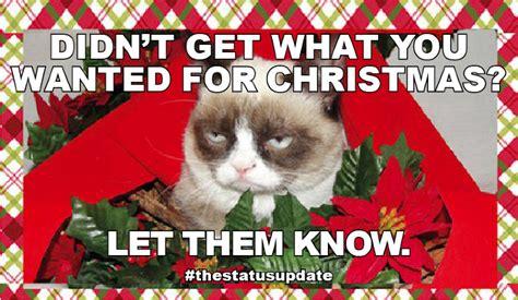 Grumpy Cat Christmas Memes - grumpy cat meme christmas memes