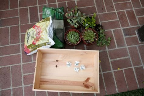 Wine Crate Planter by Wine Crate Planter Diy At Playtime