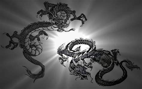 imagenes wallpapers hd de dragones dragones chinos wallpaper im 225 genes de miedo y fotos de