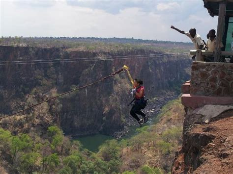 gorge swing zambia my jump picture of zambezi eco adventures livingstone