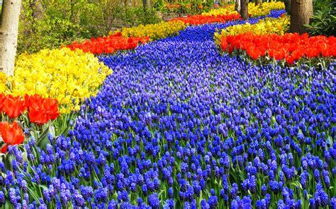 Karpet Animasi 9 taman bunga terindah di dunia dewa berita