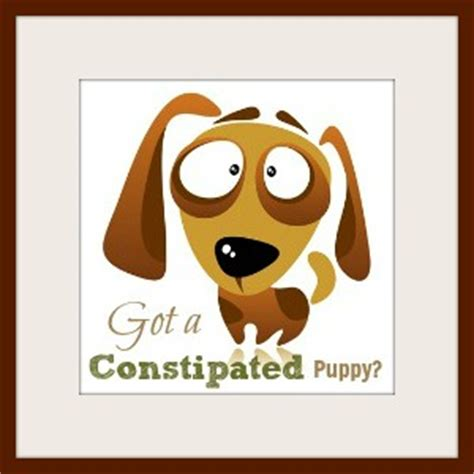 constipated puppy got a constipated puppy